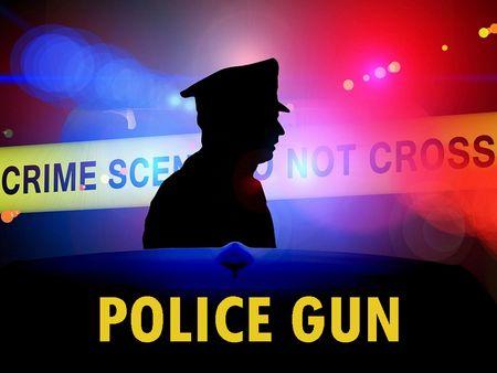 Police Gun [v0.28]